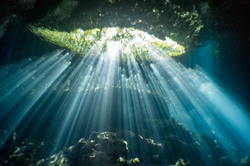concours de photo et de l'image sous marin