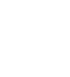 Logo Festival international du film et de l'image des mondes sous marins